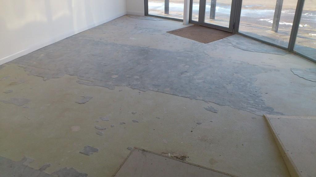 Sub Floor Before
